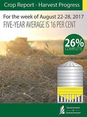 Crop Report for the Period August 22 to 28, 2017 | News and Media | Government of Saskatchewan Agriculture SouthWest Saskatchewan  Crops
