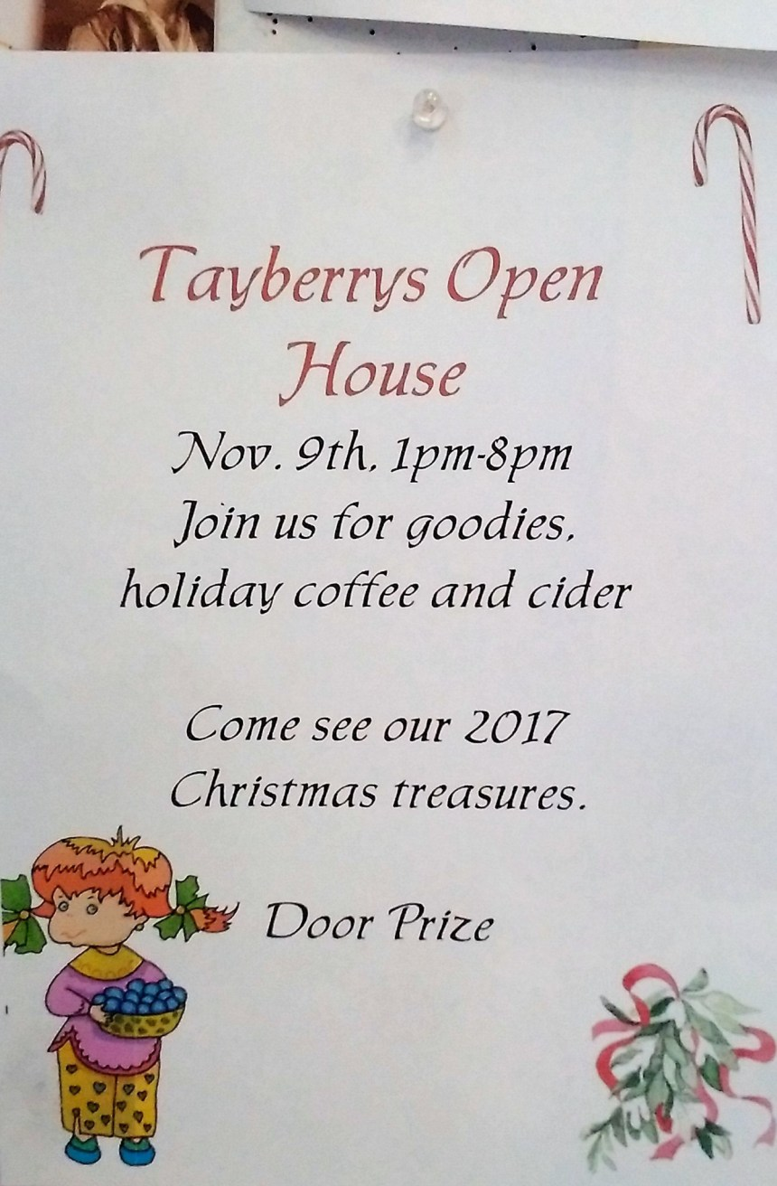 Tayberrys Open House Business GULL LAKE  Small Business