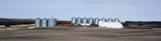 Sask. developing rural crime app Government Innovation  Technology Rural Municipality