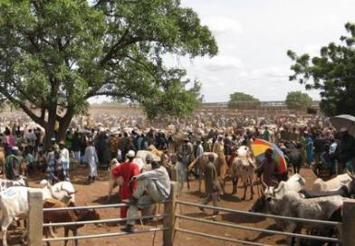 Marché à bétail de Fada: Que s'est-il passé?