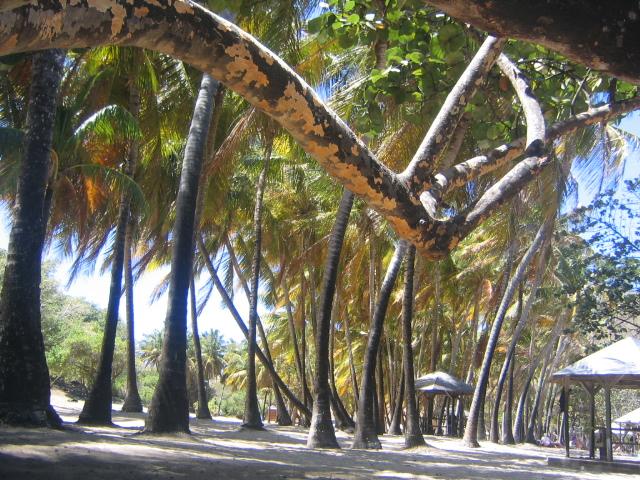 Our beach hideaway