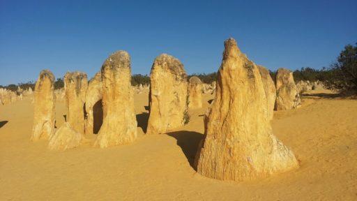 Pinnacles im Nambung Nationalpark nördlich von Perth in Western Australia