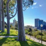 Skyline von Perth CBD vom Kings Park