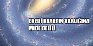 """AHİRETİN VARLIĞINA """"MİDE"""" DELİLİ"""