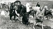 24 Nisan 1915 den önce neler oldu?