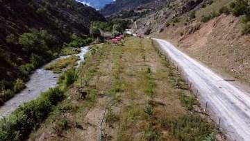 Türkiye'nin dört bir tarafından gönderilen fidanlar şehit öğretmenin baba ocağında hatıra ormanında buluştu