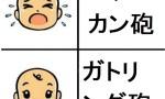 【ガンダム】バルカン砲とガトリング砲 どっちが好き?