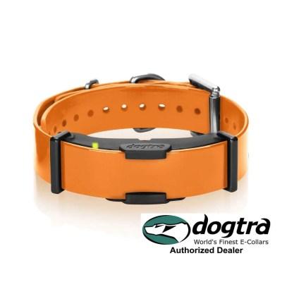 Dogtra ARC Remote Dog Training Collar - 2nd Collar