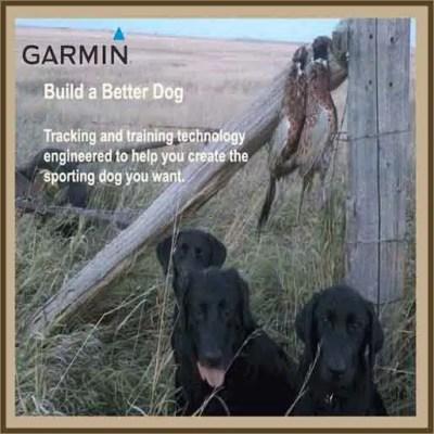 Garmin Inc. Tracking - Training