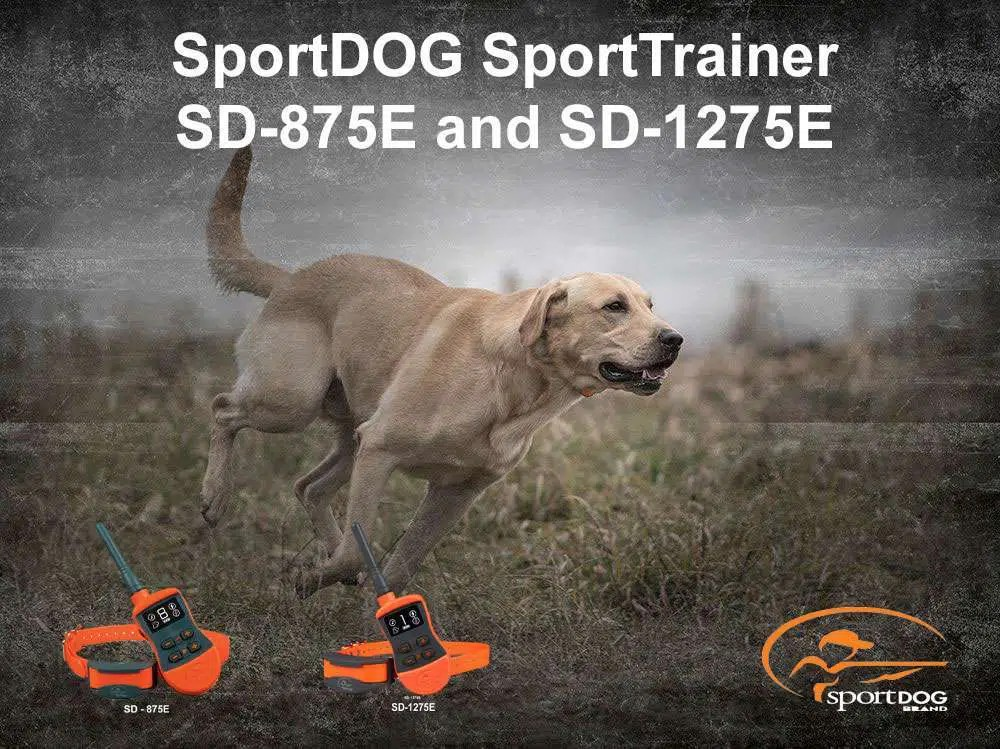 SportDOG SportTrainer 875 and 1275 – Review|gundogoutfitter|gundogoutfitters|dotraining|hunting dog|e-collar