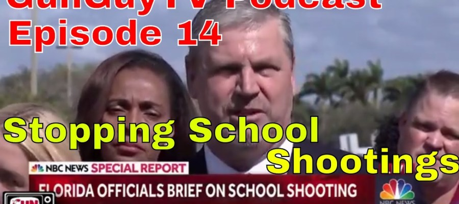 Preventing School Shootings