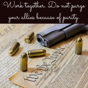 "Picture of a pistol and ammo laying on the Constitution and the quote, ""Work together. Do not purge your allies because of purity."""
