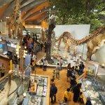 群馬県立自然史博物館は大迫力の恐竜と自然が展示されたハイクオリティな博物館!【群馬】おすすめスポット