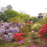 沼田公園は沼田城址に整備された自然と動物も楽しめる歴史公園!【群馬】おすすめスポット