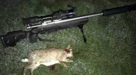 Yukon Photon Long Shots off Shooting Sticks Howa 1500 .204 Ruger