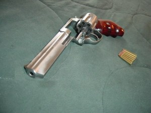 A Fantasy Ruger SP101 w/Small Grips