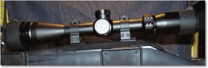 Scope Mounted with Warne scope rings.
