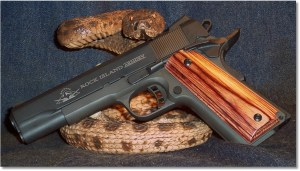 Rock Island Armory 1911A1 FS Tactical
