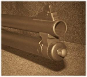 The Working End of a 20-Gauge Shotgun is Impressive