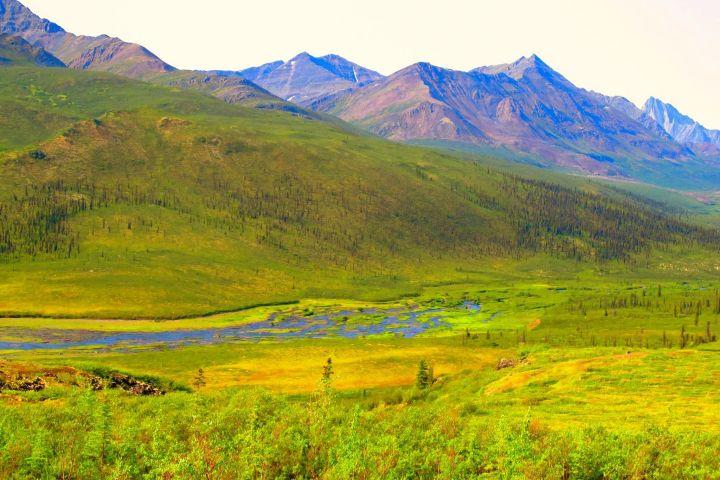 Tombstone Territorial Park | Photo: Zak Smart