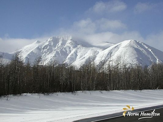 Scene on the Haines Road by Norm Hamilton, Photographer