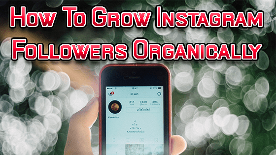 How To Increase Instagram Followers Organically | Get 10k Followers Fast