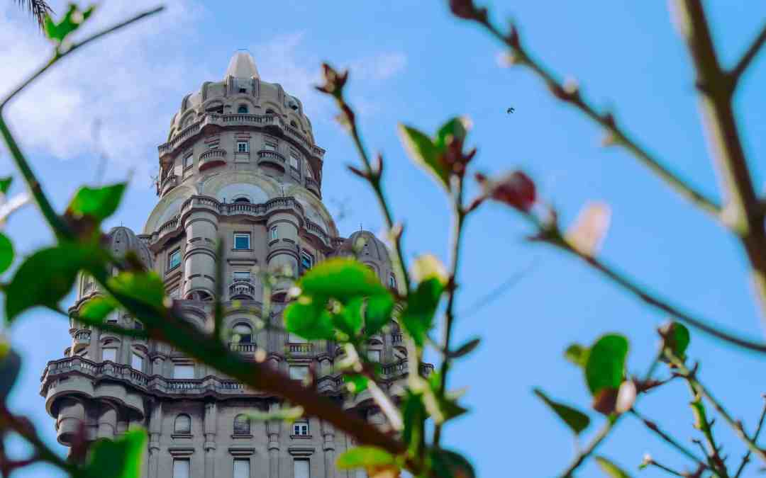 Montevideo Old City is blooming