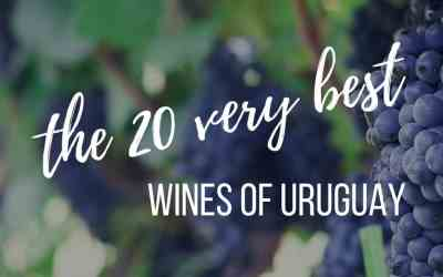 The 20 very best Uruguayan wines