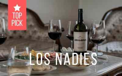 Los Nadies – Premium wine tasting in Montevideo