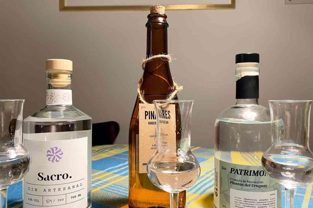 Artisanal gin tasting in Montevideo - Montevideo Food Scene