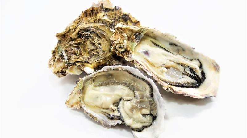 冬の牡蠣はクリーミー!牡蠣の種類や旬を知って美味しく食べよう!