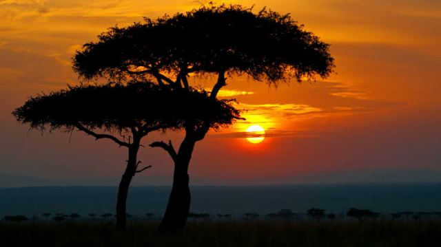 The Masai Mara Nature Reserve in Kenya