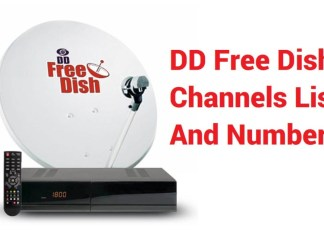 DD Free Dish Channels List and Number