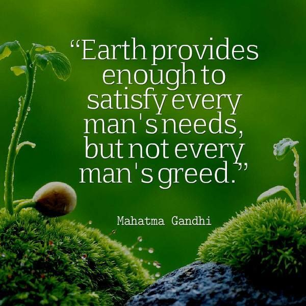 Importance of World Environment Day