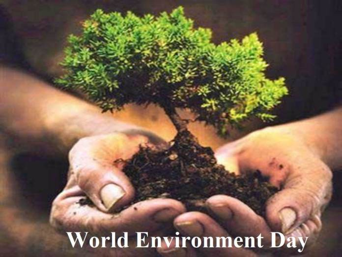 happy environment day
