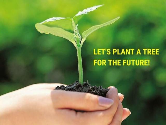 international environment day