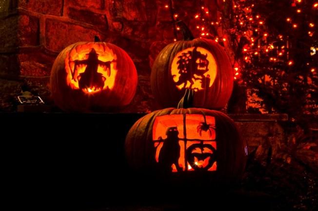 Happy Halloween, Flickr. by Professor Bop