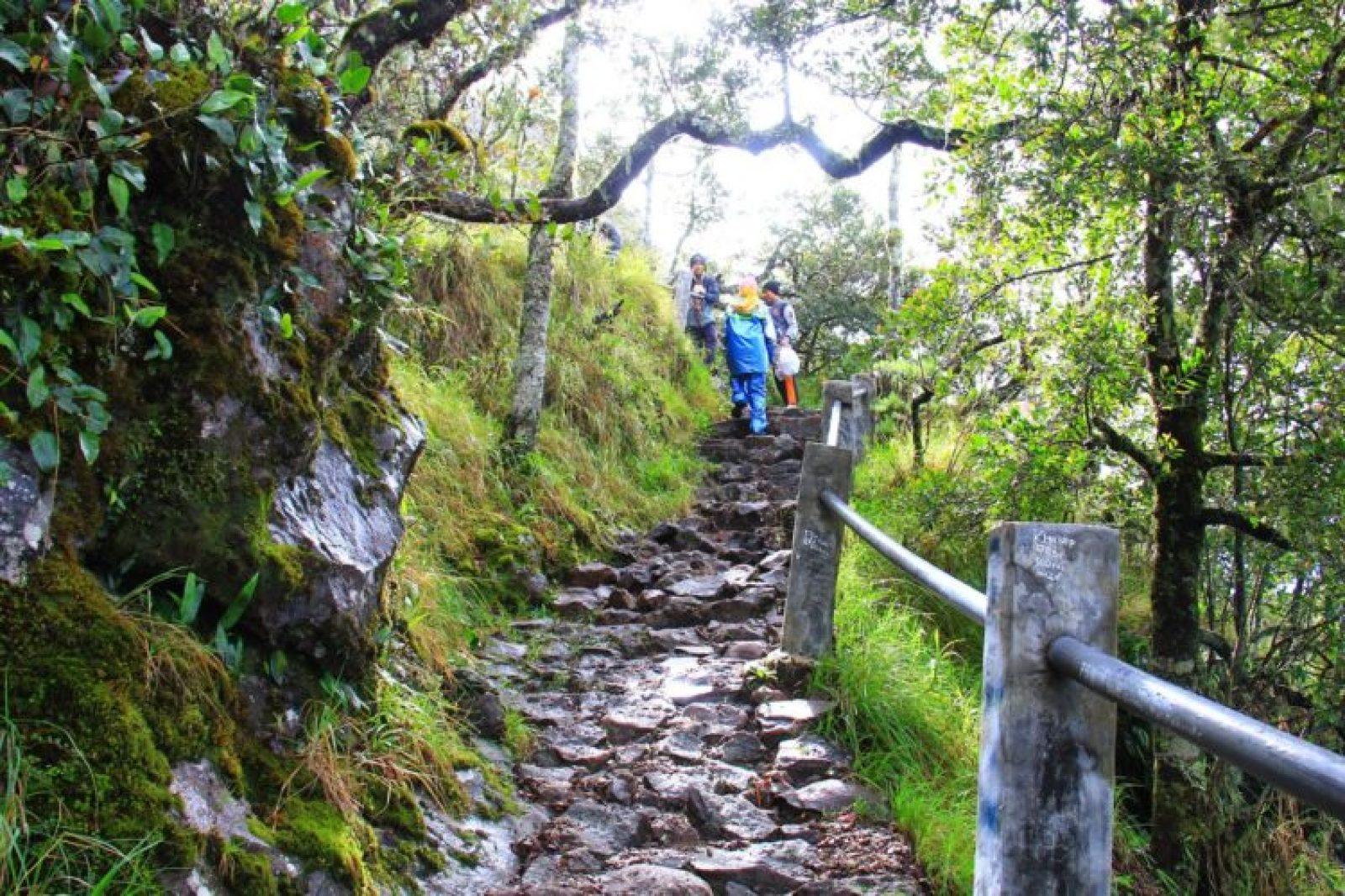 Jalur Pendakian Cemoro Sewu