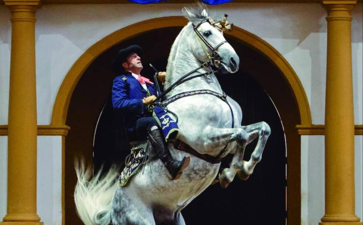 Hombre y caballo, una pareja de baile