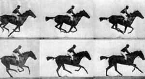 Fotografías en secuencia - Eadweard Muybridge