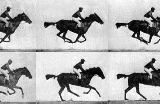 Race Horse Gallop - Eadweard Muybridge