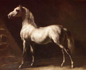 Arabian gray horse by Theodore Gericault