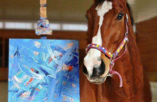 Metro Meteor - A painter horse