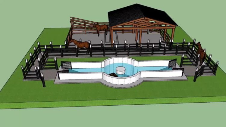 Swimming pool diagram for equine hydrotherapy