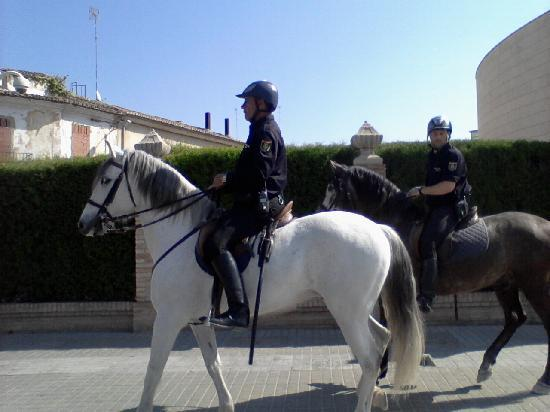 Police officer ridding a horse