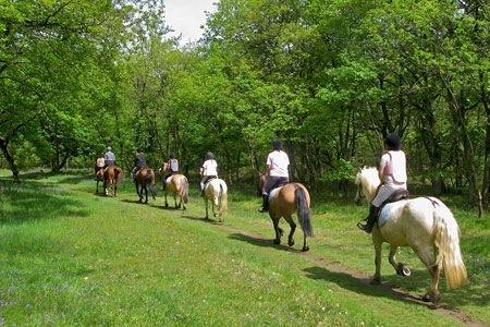 Horseback riding routes