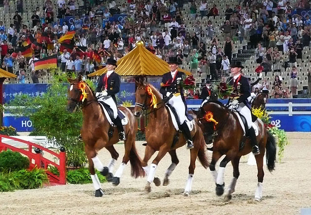 Three German gold medalists on their three hanoverian horses (Beijing 2008)