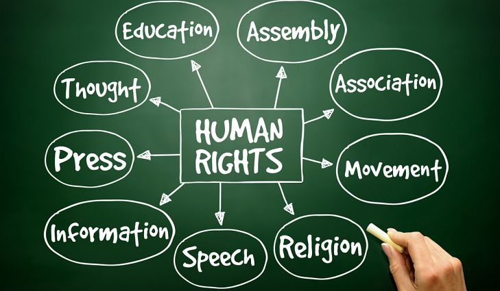 Connections of the Universal Declaration of Human Rights
