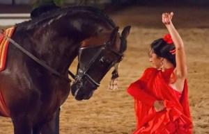 Espectáculo Pasión y duende del caballo andaluz