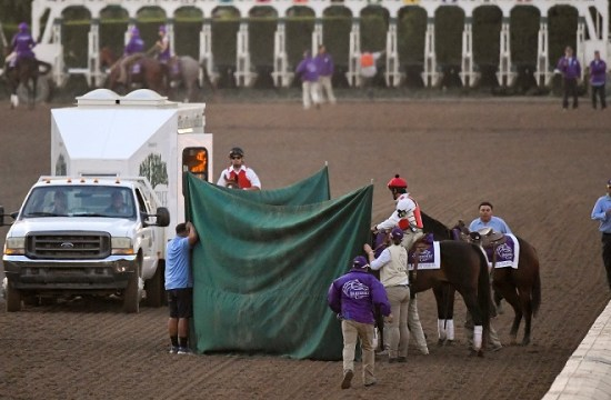 Mongolian Groom euthanized after leg injury in Breeder's Cup
